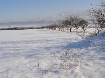 http://www.vanovice.cz/upload/soubory_hlavni_stranka/zima/uvod_5.jpg